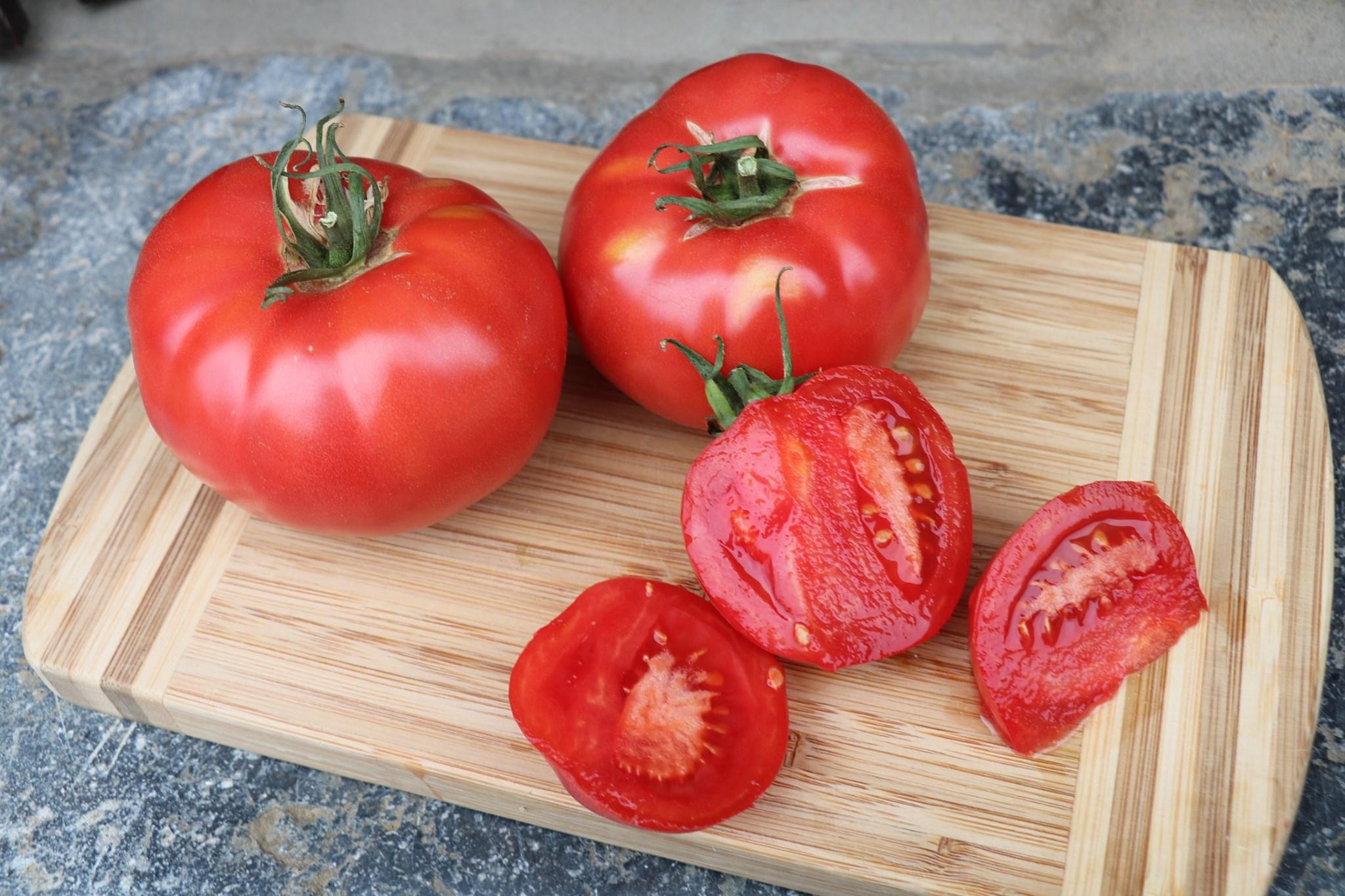 La Ferme du Joli Bois - Tomates 2